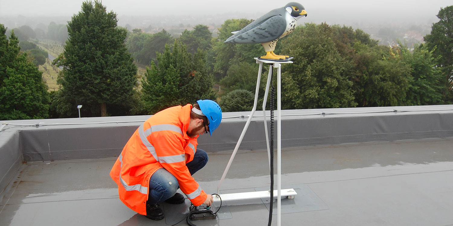 Robotic Bird Deterrent Roof Installation